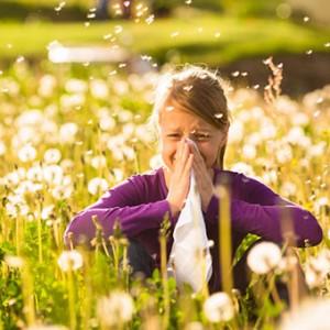allergy relief gainesville
